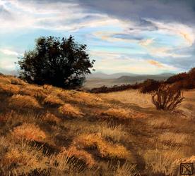 Landscape Study by merbel