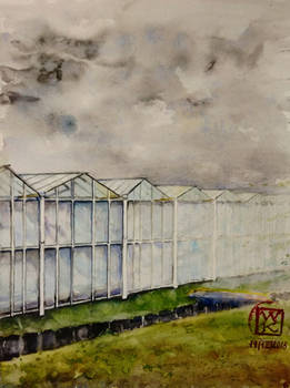 Greenhouse Netherlands