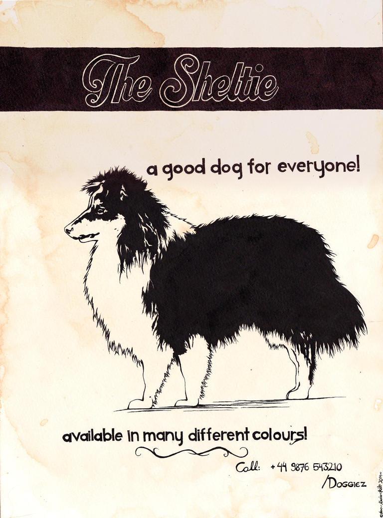 Want A Sheltie? by Starkku