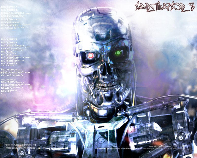 Download wallpaper Terminator    Rise of the Machines  Terminator     PC Wall Art