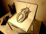 3D Drawing - Anomalocaris