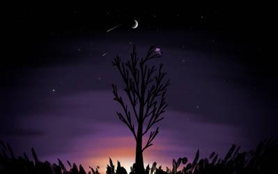 twwm - summer stargazing by xekateus