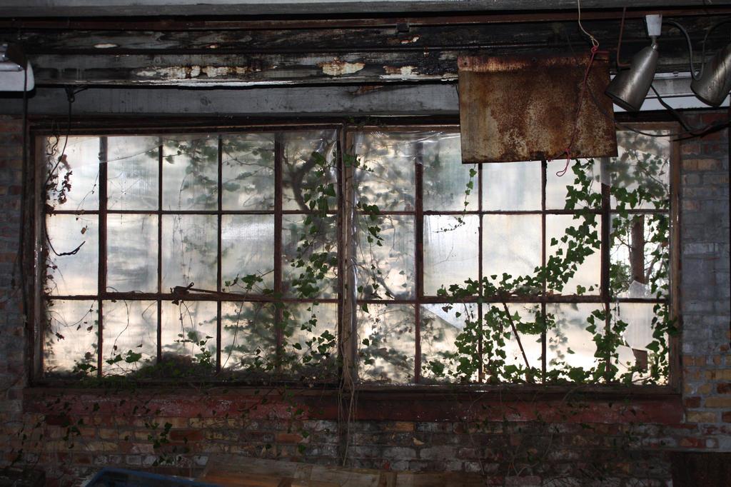 Creepy Window by DonLeo85
