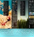 COMPANION for Rainmeter - perview 2