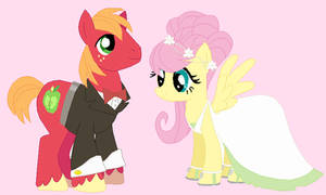 Wedding Big Mac and Fluttershy