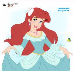 Ariel Fancy Dress 8