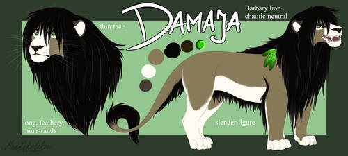 Damaja - Character Sheet