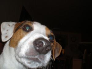 CallMeNettie's Profile Picture