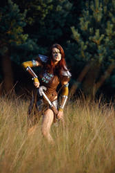 Aela the Huntress IV