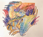 macaw dragon vol2