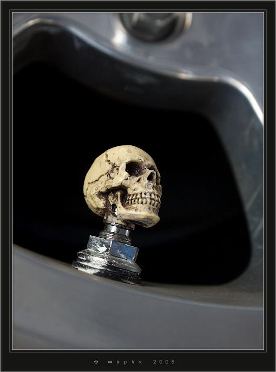 Lil' skull by HogRider