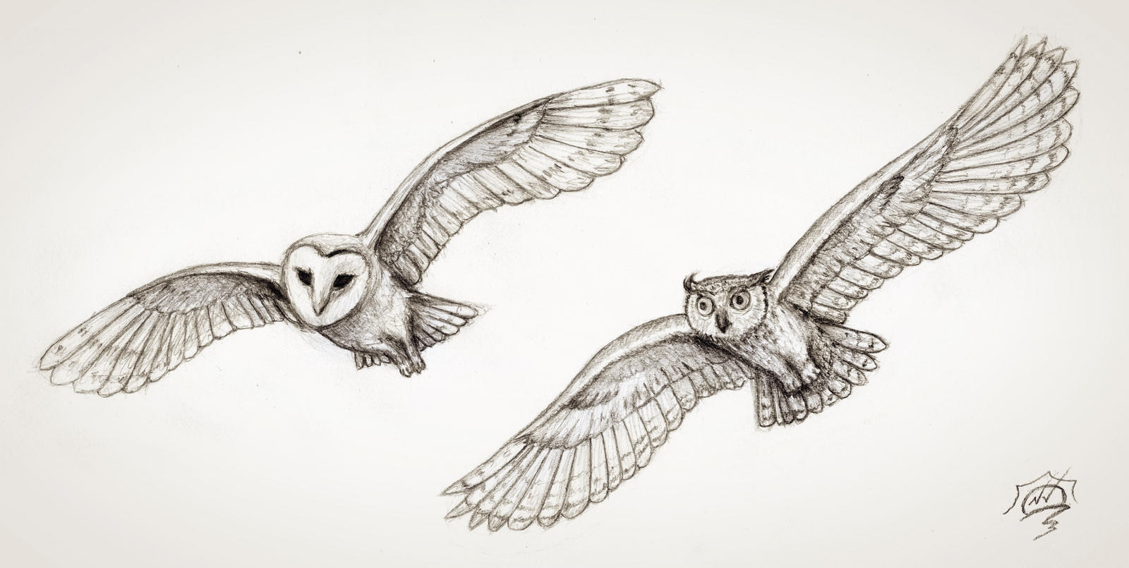 Easy Line Drawings Of Animals : 2 flying owls by snoeffel on deviantart
