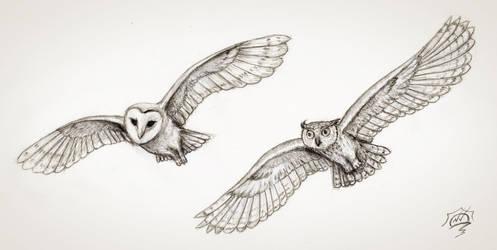 2 flying owls by Snoeffel