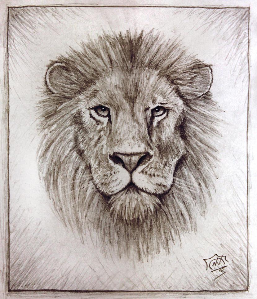 Lion by Snoeffel