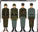 Some Waffen-SS Camouflage Uniforms