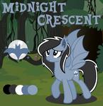 Midnight Crescent Commission