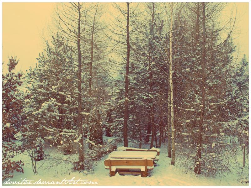 by winter  by dovitae - K�� *