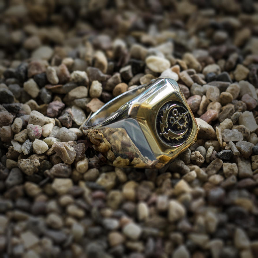 Fallout Brotherhood of Steel ring by TimforShade