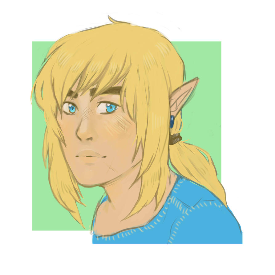 Link Breath of the Wild by TheLittleArtist