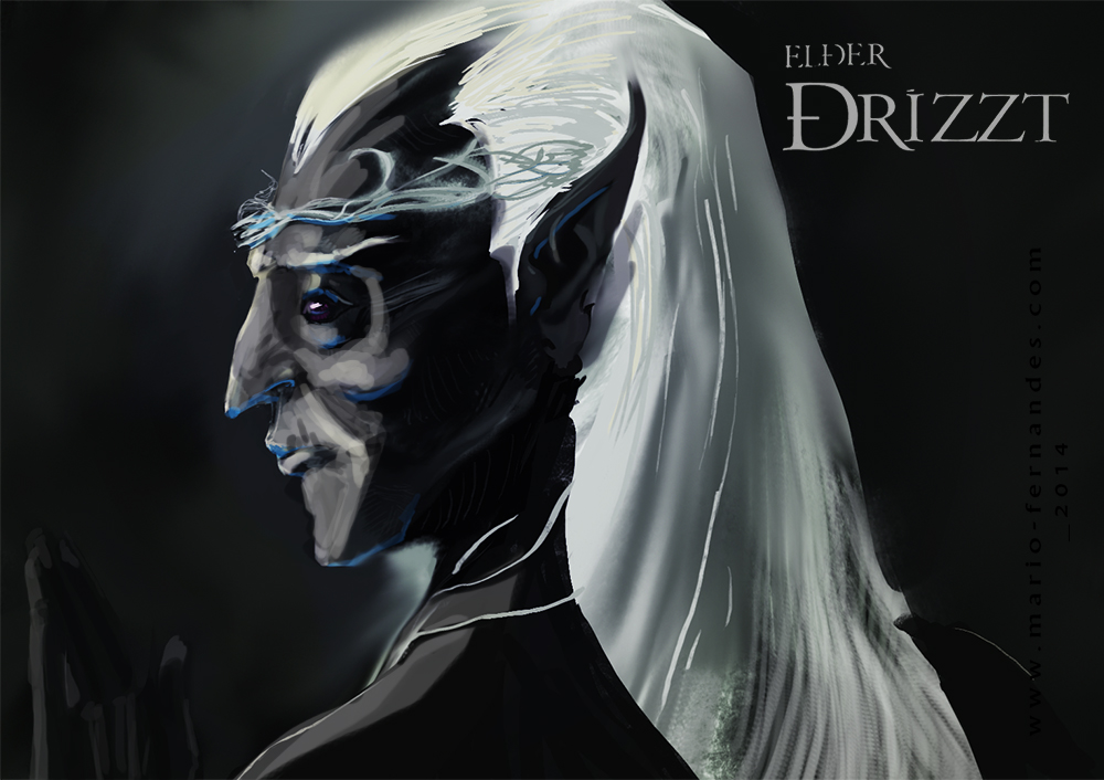 Character 14-18a-dark Elf Drizzt by mariofernandes on DeviantArt