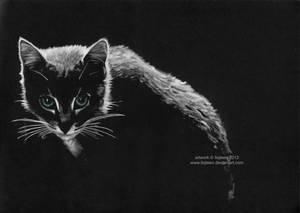 Cat by Ilojleen