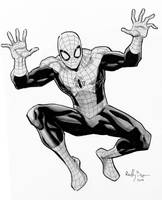 Spidey commish