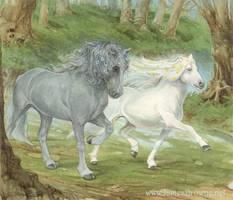 Moonlight Horses