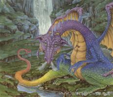 The Rainbow Dragon