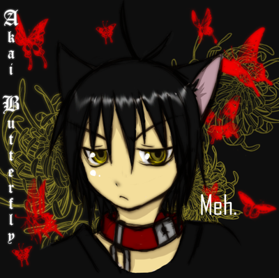 AkaiButterfly's Profile Picture