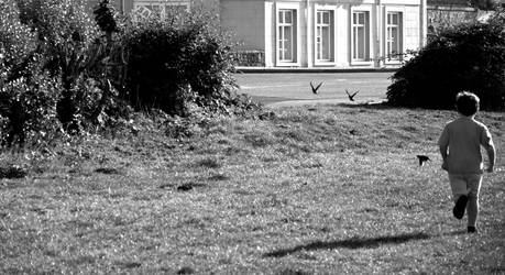 Child Running After Birds by andyfloss2000