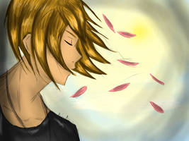 The Sun and Sakuras