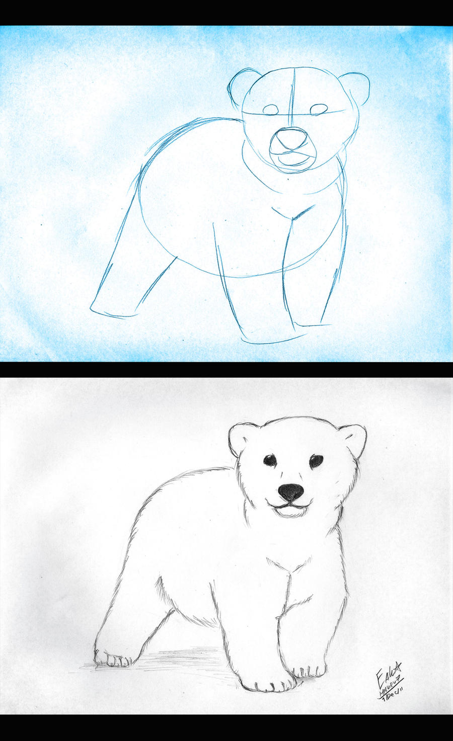 how to draw bear - photo #36