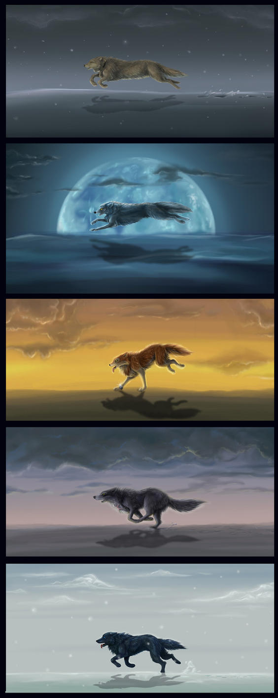 Run Wolf Warrior Run by Psychopomp16