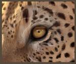 Glimpse into the Soul Leopard