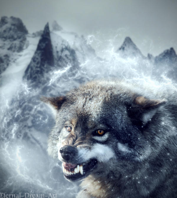 The Wolf by Eternal-Dream-Art