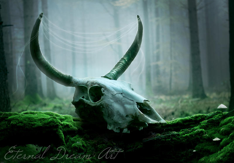 Pagan time by Eternal-Dream-Art