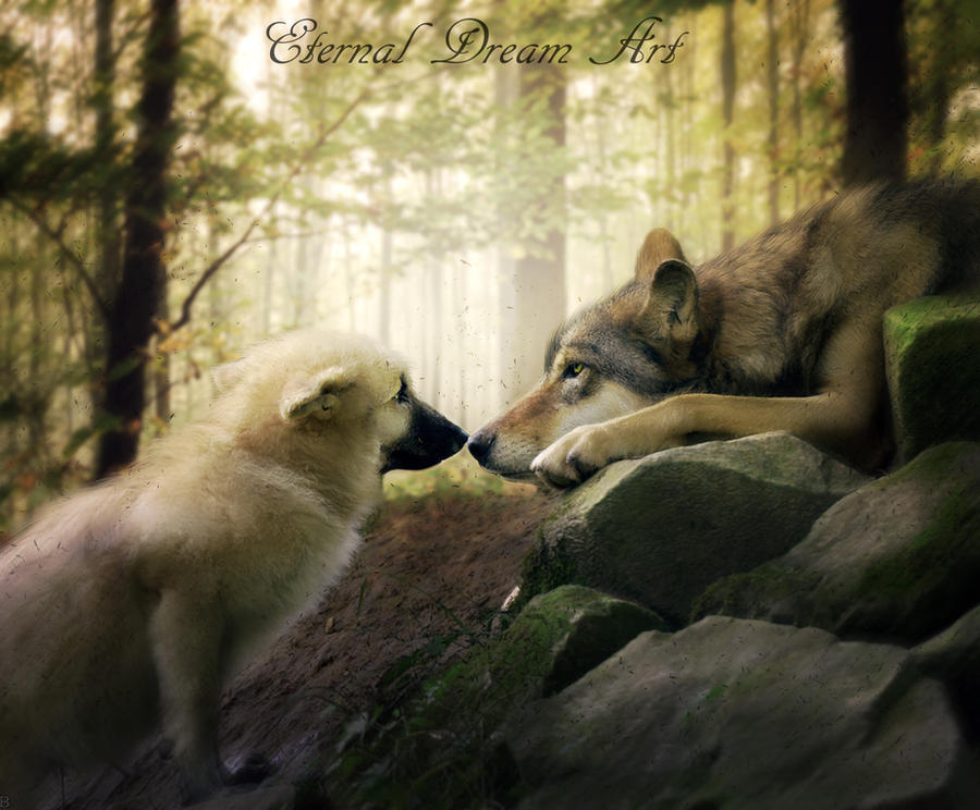 Friends by Eternal-Dream-Art