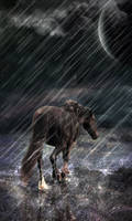Caught by the storm by Xercatos