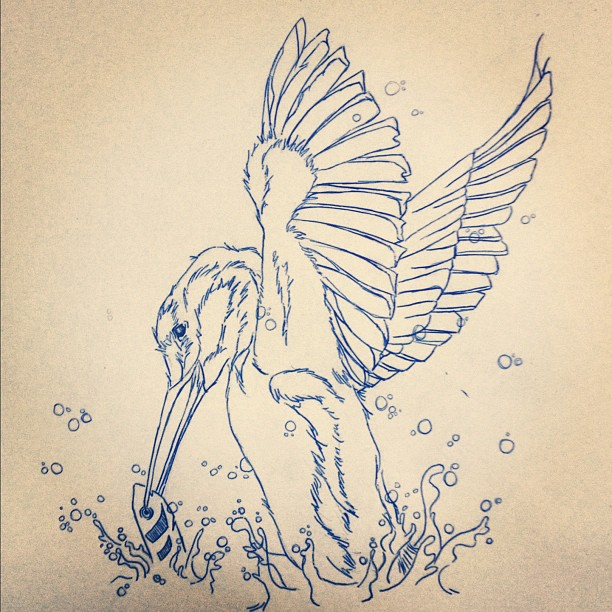 Line Drawing Kingfisher : Wip pen drawn kingfisher by kazapenny on deviantart