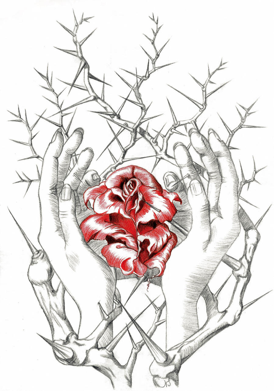 rose and hands thornbush by RAY-N-BOW