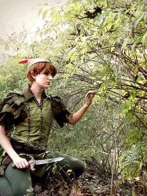 Peter Pan by phantomnova