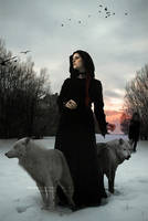 Darkness falls by black-cat16