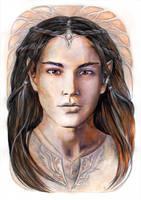 Young elven prince by JankaLateckova