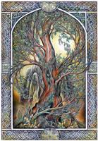 The Tree by JankaLateckova