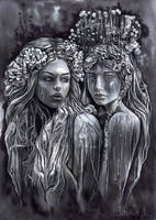 Dark Brides by JankaLateckova