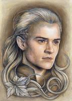 Prince Legolas by JankaLateckova