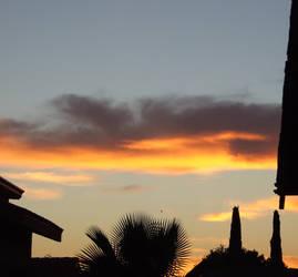 Sunset stock bright orange