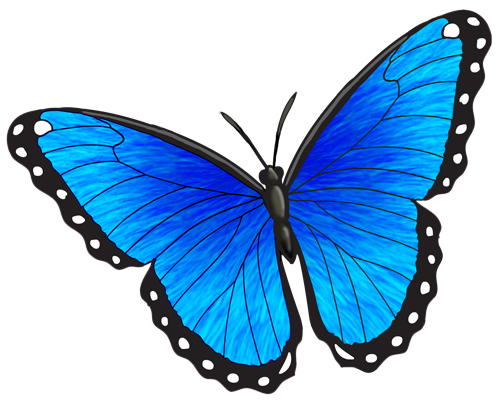 Copyright Free Butterfly Coloring Page