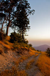 Fire Trail
