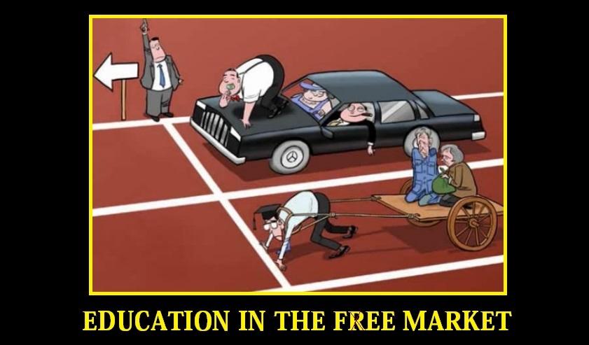 Free marketing education videos free